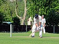 Eastons CC v. Chappel and Wakes Colne CC at Little Easton, Essex, England 23.jpg