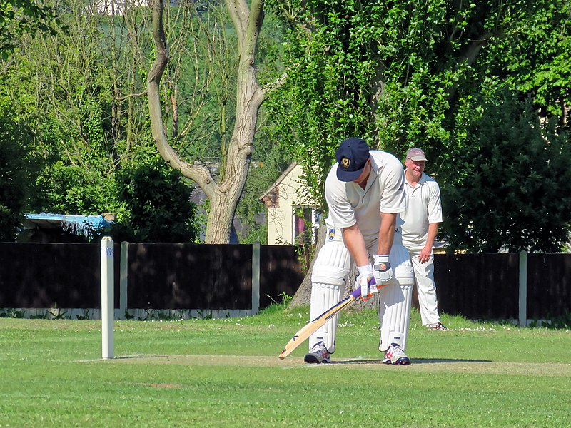 File:Eastons CC v. Chappel and Wakes Colne CC at Little Easton, Essex, England 23.jpg