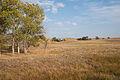 Eli, Nebraska (9097161950).jpg