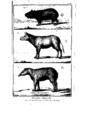 Encyclopedie volume 5-031.png