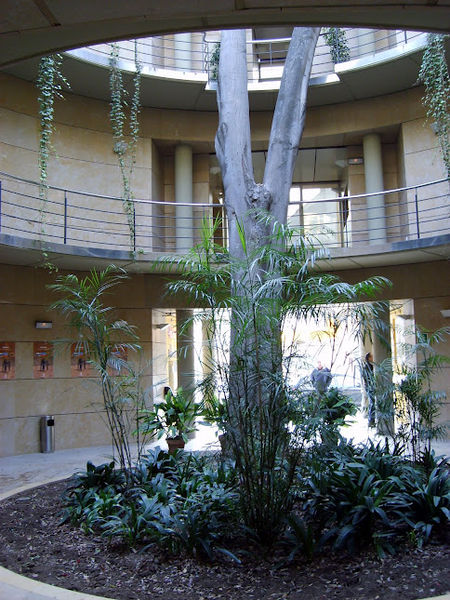 File entrada jardin botanico valencia espa a jpg for Jardin botanico costo entrada