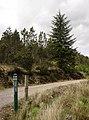Entrance to Tramp's Cairn, Dalchork Woods - geograph.org.uk - 450900.jpg