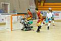 España vs Portugal - 2014 CERH European Championship - 08.jpg