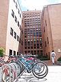 Estructuras, Edificio de Economía, Universidad Nacional.JPG