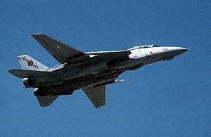 F-14B VF-74 In Flight.JPEG