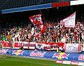 FC Red Bull Salzburg gegen SK Rapid Wien (19. Juli 2014) 17.JPG