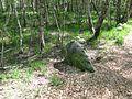 FFH 2325-301, Ohmoor, 7, Garstedt, Landkreis Segeberg.jpg