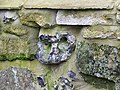 Face in the wall, Bishopstone - geograph.org.uk - 1145031.jpg