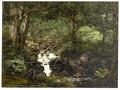 Fairy Glen Waterfall, Penmaenmawr, Wales-LCCN2001703534.tif