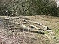 Fallen Limbs - geograph.org.uk - 1800771.jpg