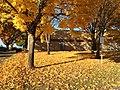 Farmington View School in fall.jpg