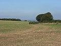 Farmland, Inkpen Hill - geograph.org.uk - 243662.jpg