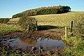 Farmland at Down Law - geograph.org.uk - 1032261.jpg