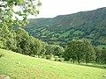 Farmland in Cwm Rhiwarth - geograph.org.uk - 241751.jpg