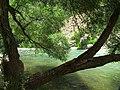 Fars - Sedeh - Tange Boragh - panoramio (1).jpg