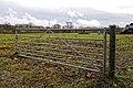 Field gate on Sedgwick Lane, Nuthurst, West Sussex.jpg