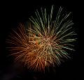 Fireworks (6739605783).jpg