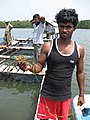 Fish farm worker with crab (7569046294).jpg