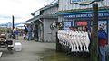 Fishing charter business, Homer, Alaska.jpg