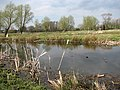 Fishing ponds - geograph.org.uk - 757701.jpg