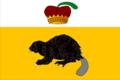 Flag of Bekovo (Penza oblast).png