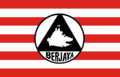 Flag of Berjaya Party.png