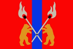 Chudovsky District - Flag of Chudovsky District