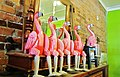 Flamingos resting in a boutique, East 7th Ave. Ybor City, Tampa. - Flamants roses se reposant en attendant un client décidé - panoramio.jpg