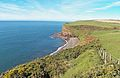 Fleswick bay from the St Bees path.jpg