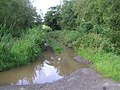 Flooded lane, Dunnamona - geograph.org.uk - 1453964.jpg