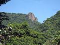 Floresta da Tijuca 54.jpg