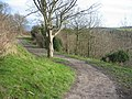 Footpath along the Knolls - geograph.org.uk - 324025.jpg