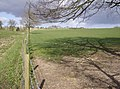 Footpath from Bighton Wood - geograph.org.uk - 369927.jpg