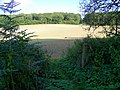 Footpath near Wilton - geograph.org.uk - 1470874.jpg