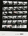 Ford A2944 NLGRF photo contact sheet (1975-01-27)(Gerald Ford Library).jpg