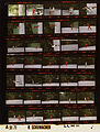 Ford A5171 NLGRF photo contact sheet (1975-06-22)(Gerald Ford Library).jpg
