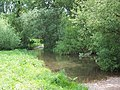 Ford through River Tarrant at Tarrant Rushton - geograph.org.uk - 452046.jpg