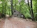Foret de Bonneval, Vosges, France - panoramio (1).jpg