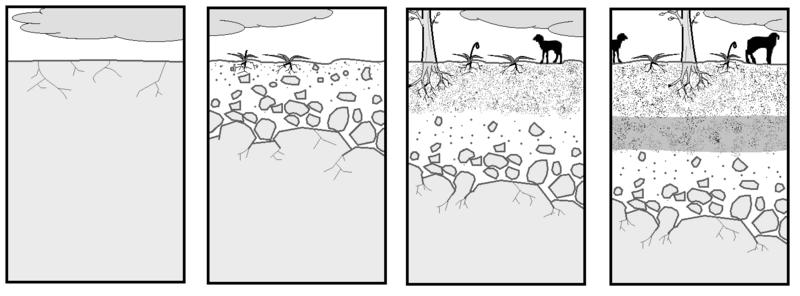 File:Formación del suelo.png
