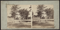 Fountain, Central Park, from Robert N. Dennis collection of stereoscopic views 2.png