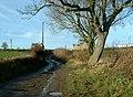 Frank Lane towards Leys Farm, Emley - geograph.org.uk - 109063.jpg