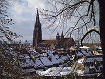 Freiburg Münster3 05 03 06.JPG
