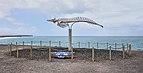 Fuerteventura, El Cotillo — Cuvier's beaked whale.jpg