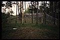Gåsinge-Dillnäs 8-1 - KMB - 16001000057624.jpg