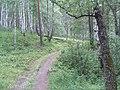 G. Miass, Chelyabinskaya oblast', Russia - panoramio (54).jpg