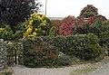 Garden at Far Arnside - geograph.org.uk - 1004990.jpg