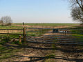 Gate and Stile - geograph.org.uk - 377480.jpg