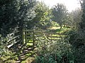 Gate on footpath, to the north of East Budleigh - geograph.org.uk - 1020071.jpg