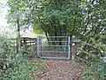 Gate on the path - geograph.org.uk - 1566057.jpg