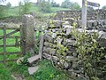 Gate stile on the Pennine Way - geograph.org.uk - 844753.jpg